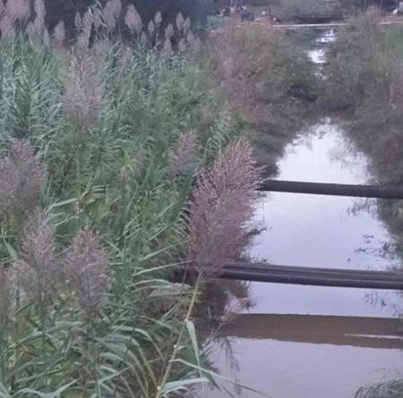 CONSORZI DI BONIFICA, PERRINI: URGE PULIZIA DI CANALI PRIMA CHE SI FACCIA CONTA DEI DANNI